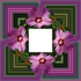 3D rendono la struttura del fondo del fiore Fotografia Stock