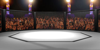 3D a rendu l'illustration d'un Muttahida Majlis-e-Amal, arts martiaux mélangés, combattant la cage Image stock