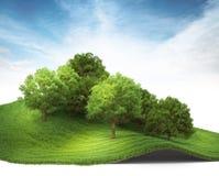 3d a rendu l'illustration d'une colline avec le verger Photographie stock