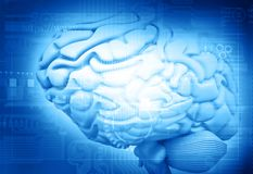 3d rinden de funciones del cerebro ilustración del vector