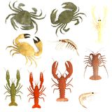 3d rinden de sistema crustáceo stock de ilustración