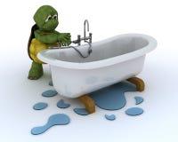Contratista de la fontanería de la tortuga Fotos de archivo