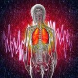 3d rinden el ejemplo médico del dolor del sistema respiratorio Fotos de archivo libres de regalías