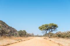 D2908-road między B8-road i Hoba meteorytem Zdjęcie Royalty Free
