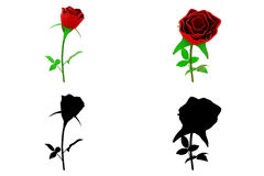 3d rose concept collections with alpha and shadow channel Royalty Free Stock Photos