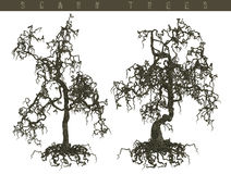 3D scary trees. A 3D design of scary trees with limbs and trunk isolated Royalty Free Stock Images