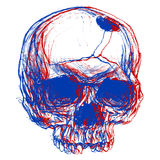 3d schedel Stock Fotografie