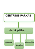2d scheme. About new yourk central park and sustainable architecture Stock Photos
