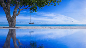 3d sea view rope swing under the tree Royalty Free Stock Photography