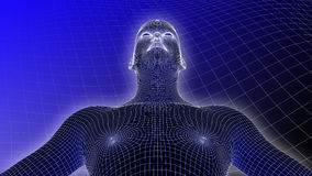 3D ser humano Wireframe no fundo azul Fotos de Stock Royalty Free