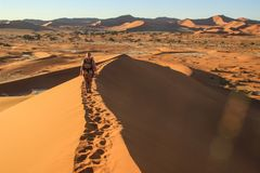 D?sert de Namib, en parc national de Namib-Nacluft en Namibie Sossusvlei Touriste de jeune femme avec des supports de sac ? dos s images libres de droits