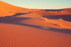 D?sert de sable photographie stock