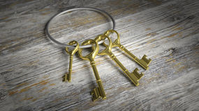 3D silver key ring with golden retro keys Stock Photography