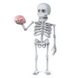 3d Skeleton has a nice looking brain Royalty Free Stock Image