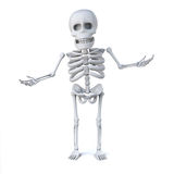 3d Skeleton is innocent. 3d render of a skeleton with his hands out in innocent gesture Royalty Free Stock Image