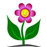 3D Smiling Flower Stock Images