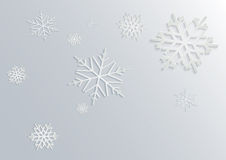 3D snowflake Stock Images