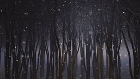 3D snowy forest Stock Image