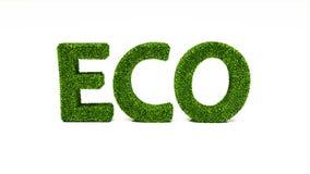 3D som framför ECO, uttrycker gjort av grönt gräs stock illustrationer