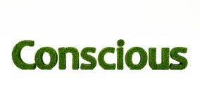 3D som framför MEDVETET ord gjort av grönt gräs royaltyfri illustrationer