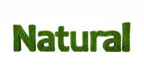 3D som framför NATURLIGT ord gjort av grönt gräs royaltyfri illustrationer