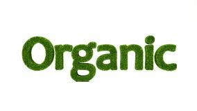 3D som framför ORGANISKT ord gjort av grönt gräs vektor illustrationer