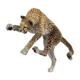 3D som framför stora Cat Cheetah på vit Fotografering för Bildbyråer