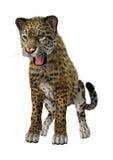 3D som framför stora Cat Jaguar Royaltyfria Foton