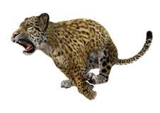 3D som framför stora Cat Jaguar Royaltyfri Foto