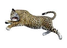 3D som framför stora Cat Jaguar på vit Fotografering för Bildbyråer