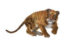 3D som framför stora Cat Tiger på vit Arkivfoton