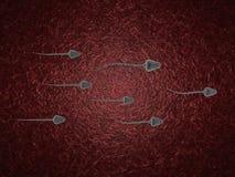 3d sperm cells Stock Images