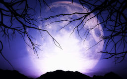 3D spooky moon background. 3D render of a Halloween landscape with moon Vector Illustration