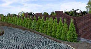 3d steeg van de boomlijn, geeft terug royalty-vrije illustratie