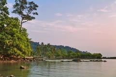 D?sterer tropischer Sonnenuntergang stockfotos