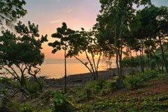 D?sterer tropischer Sonnenuntergang stockfoto
