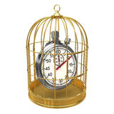 3d Stopwatch in bird cage Stock Photography