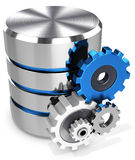 3d storage database symbol and gears. On white background Stock Photography
