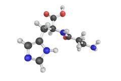 3d structure de Carnosine, une molécule de dipeptide Images stock