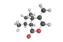 3d structure of Epinepetalactone, a cat pheromone used by cats a Royalty Free Stock Image