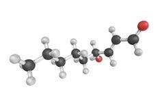 3d structure of 4-Hydroxynonenal, an unsaturated hydroxyalkenal Stock Photos