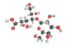 3d structure of Lactobionic acid, a sugar acid.  Royalty Free Stock Image