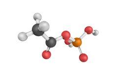 3d structuur van Acetylphosphate, een enzym dat CH katalyseert Stock Foto's