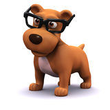 3d Student dog Stock Photos