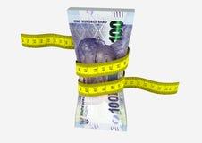 3D sul - moeda africana com pares de tesouras Imagem de Stock