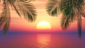 3D sunset ocean with palm tree fronds Royalty Free Stock Photos