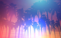 3D sunset palm trees with retro effect Royalty Free Stock Photo