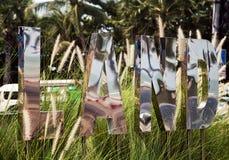 3D tekstteken in het gras: Land Grote zilveren spiegelbrieven Royalty-vrije Stock Fotografie