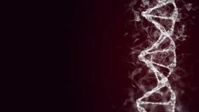 3D teruggegeven loopable animatie van roterende DNA royalty-vrije illustratie