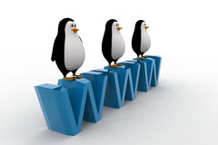 3d three penguins standing on WWW text concept Royalty Free Stock Photos